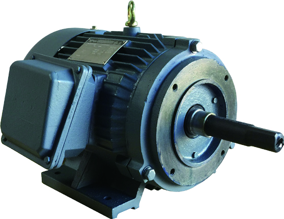 Close_Coupled_Pump_Motor_High_Torque.jpg